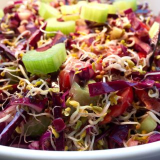 Broccoli sprouts and red cabbage