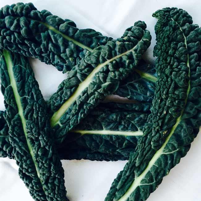 A few Cavolo nero (Lacinato kale) leaves