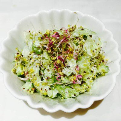 Cucumber, broccoli and radish sprouts salad